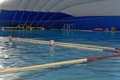 Vor-dem-Anschwimmen