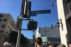 LA-Hollywood-Blvd