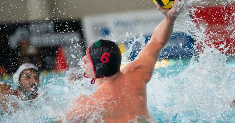 Waspo will Meister werden – Sharks kämpfen um Bronze